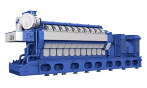 Wartsila Delivers Lng-fired Peaking Power Plant to Kerala, India